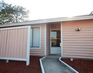 2913 Eastern Willow Avenue, Orlando image