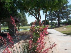 Dobson Ranch Park & Lake