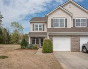 12027  Stratfield Place Circle, Pineville image