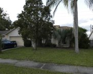 12116 Fruitwood Drive, Riverview image