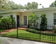 402 S Royal Poinciana Drive, Tampa image