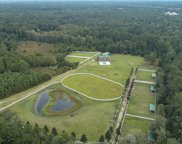 101 Trotters Rd, Bluffton image