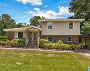 6991 Mcfrancis Rd, Trussville image
