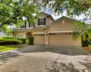1048 Shadowmoss Drive, Winter Garden image