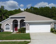 322 Fountainview Circle, Oldsmar image