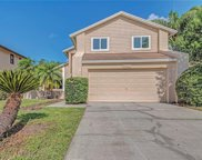 16120 Gardendale Drive, Tampa image