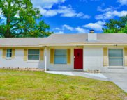 1203 ABILENE TRL, Orange Park image