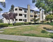39034 Guardino Dr Unit 207, Fremont image