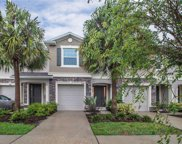 10411 Red Carpet Court, Riverview image