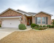 1043 Centennial Mill Lane, Frisco image