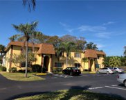 341 S Mcmullen Booth Road Unit 145, Clearwater image