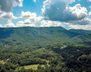 295 Mountain Ridge Way, Walland image