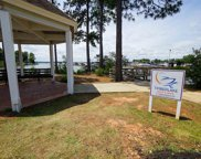 516 Links Pointe Court, Chapin image