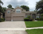 4263 Sea Rock Court, Apopka image