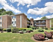 600 South York Street Unit 2E, Elmhurst image