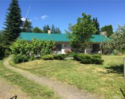 3993 Nelson Rd, Deming image