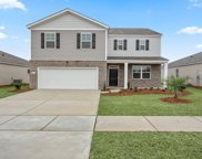 264 Forestbrook Cove Circle, Myrtle Beach image