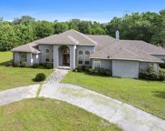 262 Chalmers  Road, Hardeeville image