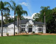 10206 Elbow Bend Road, Riverview image
