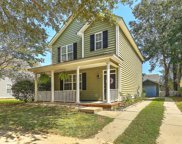 1219 Spotted Owl Drive, Mount Pleasant image