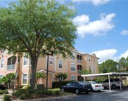 13512 Turtle Marsh Loop Unit 728, Orlando image