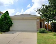 3000 Spotted Owl Drive, Fort Worth image