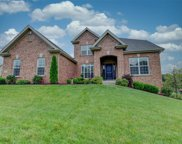 1114 Wilmas Valley  Court, Chesterfield image