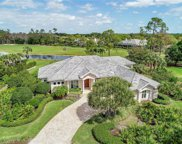 2705 Buckthorn Way, Naples image