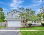 20359 South Cobble Stone Court, Frankfort image