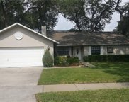 980 Harbor Hill Drive, Safety Harbor image