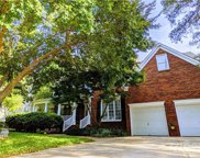 523 Cuxhaven  Court, Fort Mill image