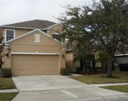 1408 Willow Branch Drive, Orlando image