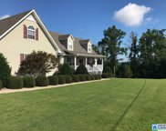 817 Ransome Dr, Oneonta image