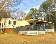 44 Pleasant View Ct, Chappells image