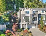 867 224th Ave NE, Sammamish image
