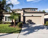 11624 Palmetto Pine Street, Riverview image