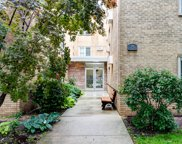 248 South Marion Street Unit 206, Oak Park image
