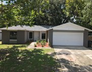 1541 Long Pond Drive, Valrico image
