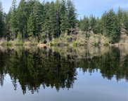 595 Silent Lake Rd, Quilcene image