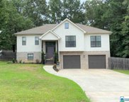 20376 Castle Ridge Rd, Mccalla image