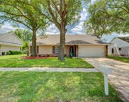 15007 Redcliff Drive, Tampa image