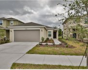 10708 Southern Forest Drive, Riverview image