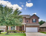 10614 Larch Grove Ct, Helotes image