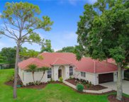 4033 Presidential Drive, Palm Harbor image