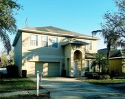 5341 Pepper Brush Cove, Apopka image