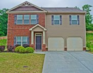 209 Winespring Place, Simpsonville image
