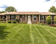 115 Hickory Heights Dr, Hendersonville image