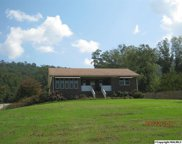 12946 Alabama Highway 227, Guntersville image