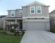 10407 Waterstone Drive, Riverview image