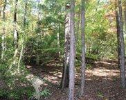 00 Busch Creek Road, Walhalla image